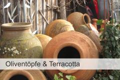 Oliventoepfe-Terracotta