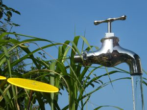 Wasserspiele - Garten Bronder