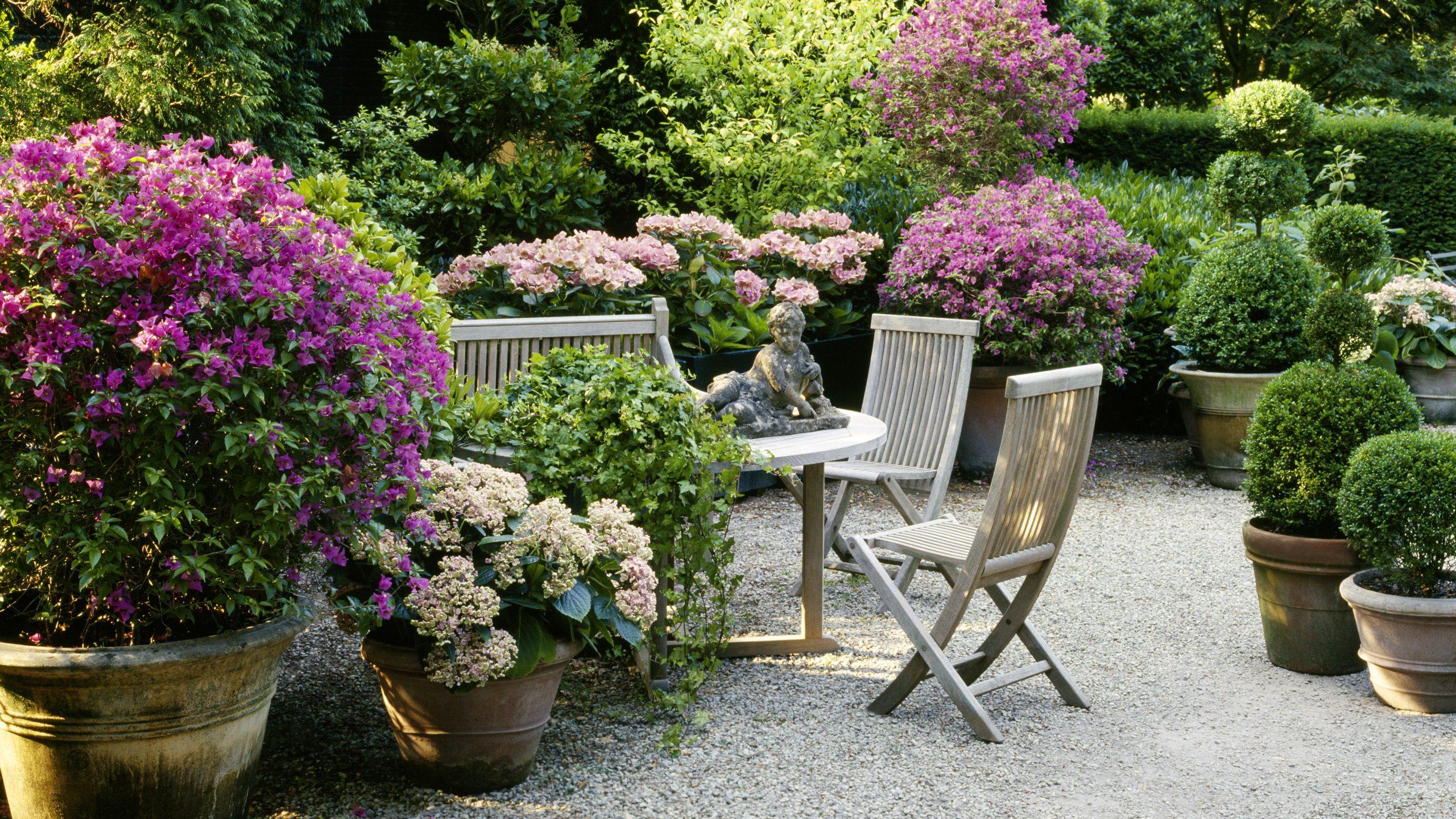 Start Garten Bronder 2020